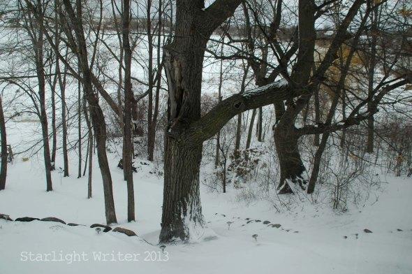 snowingApril17bi