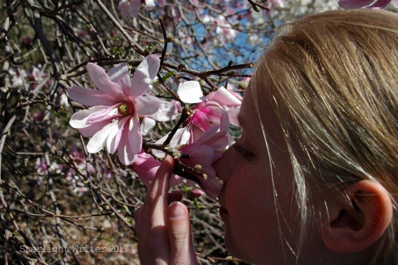 spring 074i