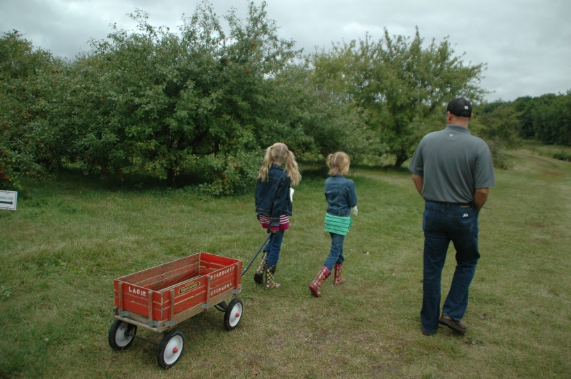 applepicking 004