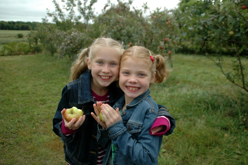 applepicking 043