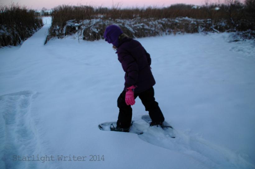 snowshoes 020101