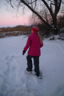 snowshoes 026102