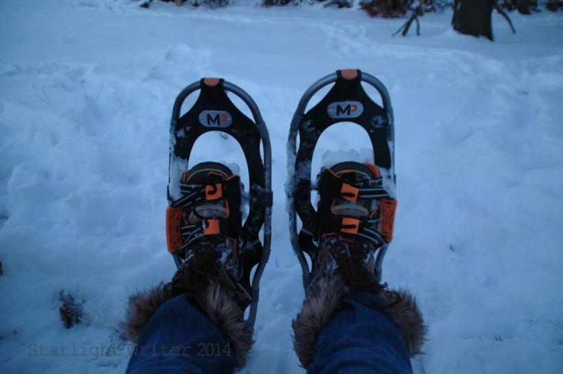 snowshoes 033104