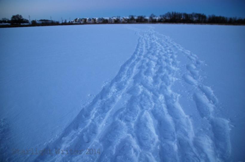 snowshoes 059107
