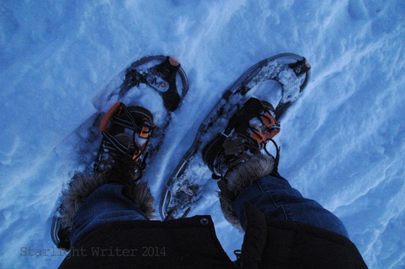 snowshoes 070108
